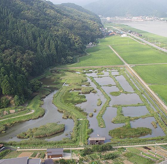 Hachigoro Toshima Wetland